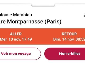 Vente: Billet TGV - Aller-retour Paris-Toulouse (44€)