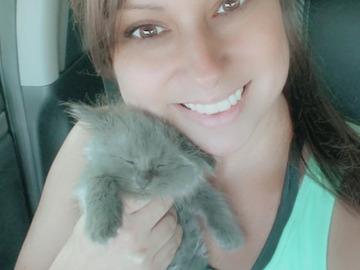 VeeBee Virtual Babysitter: Ohio Virtual Babysitter/Nanny, Mother of 3