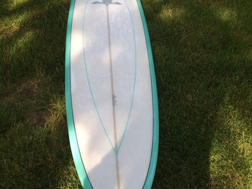 For Rent: 7'4 Chris Birch Fun Shape