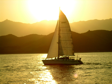 Selling: Captain - West Palm Beach, Fl