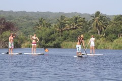 Excursion or Lesson: SUP Lagoon tour