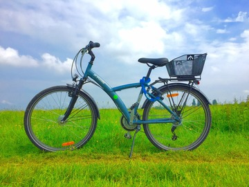 Renting out: Medium Size Cruiser with a Basket