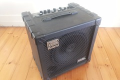 Renting gear: Roland Bass Cube 30