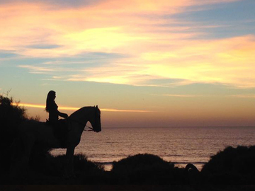 Suggestion: Passeios a Cavalo/Horseback Rides Along the Beach - Tavira