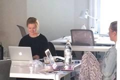 Workspace Profile: Läppäripaikkoja Iso Roba 41 katutaso 150 €/kk