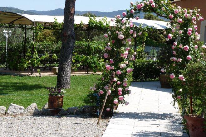 Grand jardin avec piscine , pergola et terrasse couverte ...