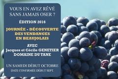 Evénement payant: Journée découverte : Vendanges en Beaujolais