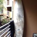 "For Rent: 8'0"" Anacapa - Bandit - Super Fun Board"