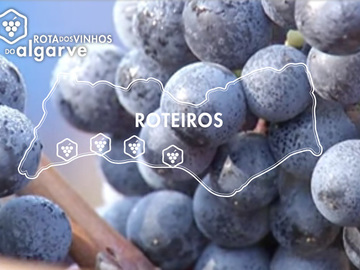 Suggestion: Rota do vinhos / Route wines - Algarve