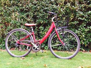 Renting out: QEH Humanitarian Bike