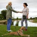 Dienstleistung: Tiercoaching für Hunde