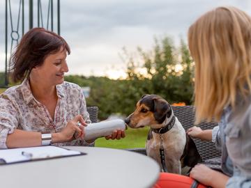Dienstleistung: Persönliche BARF Beratung für Hund