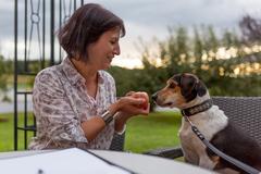 Produkt: Online BARF Futterplan für Hund