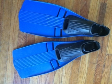 For Rent: Fins, snorkle and mask