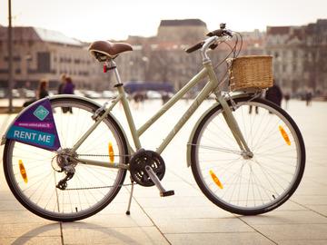 Renting out: City Bike Trek Allant