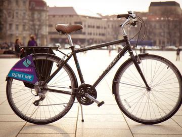 Renting out: City Bike Trek Allant Male frame