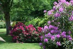 Location par jour: Jardin fleuri sur 2 hectares