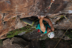 Service/Event: Personal Climber