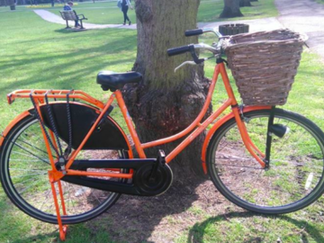 Renting out: Bikes for rent to get around Cambridge
