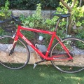 Renting out: Roadbike