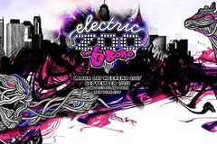 Upcoming Event: Electric Zoo 2017