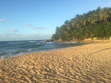 Excursion or Lesson: Las Terrenas Surf & Ecotour Family Package,  Dom. Rep.