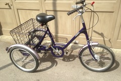 Renting out: Pashley Picador adults tricycle