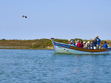 To experience: Birdwatching Ria Formosa - Passeio de Barco / Boat Trip