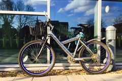 Renting out: Basket and great suspension (Cambridge)
