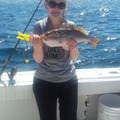 Offering: 1/2 day Offshore Fishing Charter 6 hrs