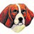 Best beagles %283%29