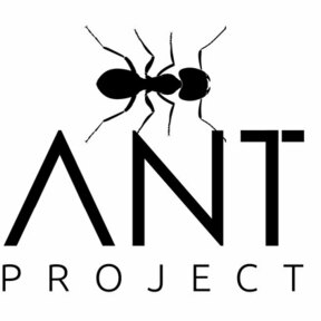 ANT PORJECT PHOTOGRAPHY