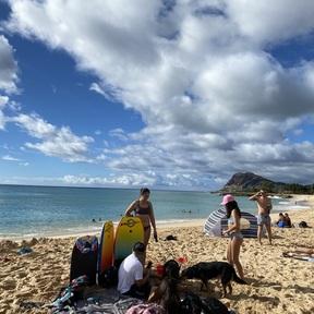Westside Aloha Rentals