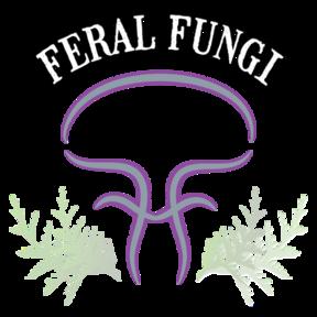 Feral Fungi