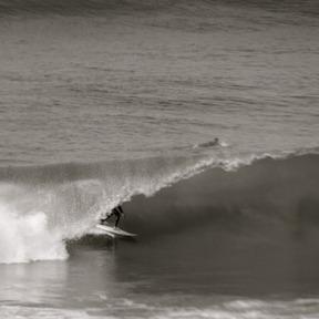 CONCEPT Surf Shop