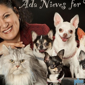 Ada Nieves for Pets