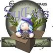 Logo sylfaes500