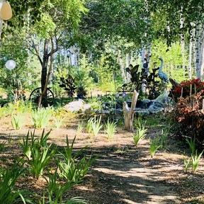 Le Jardin de Junior